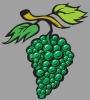 Vinařské potřeby – Blatnice pod Svatým Antonínkem